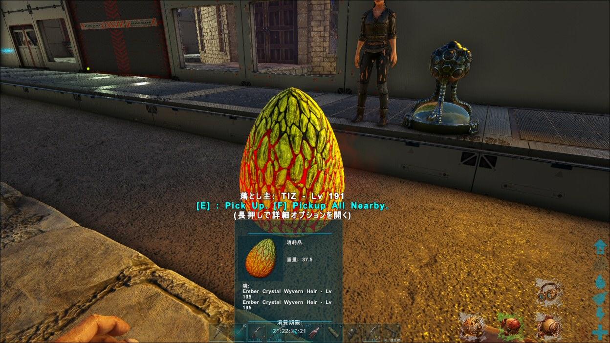 ワイバーン 卵 クリスタル